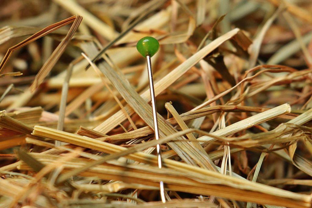 Nadel in einem Heuhaufen
